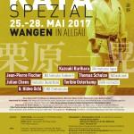 Kata Spezial 2017 in Wangen