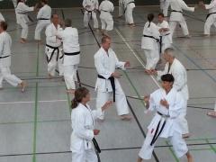 G2013_Kumitetraining unter H. Yamamoto